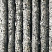 Beibehang Legno Vinile Carta Da Parati 3D Foresta di Spessore In Rilievo Albero Muro Rotolo di carta Home Decor tapete per lo sfondo della parete papier peint