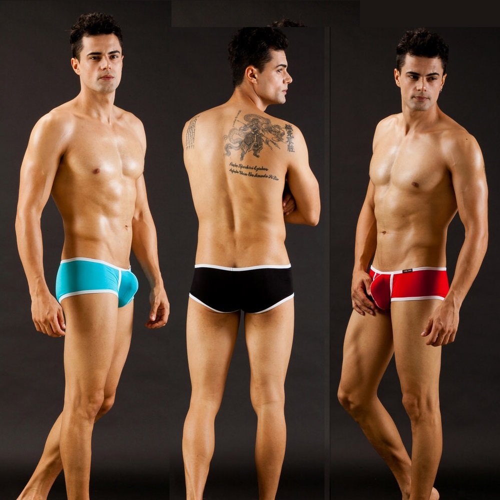 Men's underwear factory WJ network will be sexy men's underwear briefs modal thin 3002SJ 3002pj