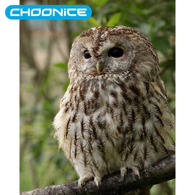 Owl Cross Stitch Pola Gratis Owl Gambar Alam Hewan Diy 3d Berlian