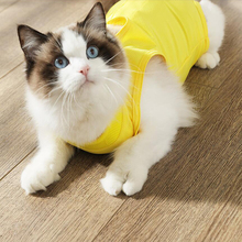 @HE Cat Postoperative Sterilization Clothing Weaning Clothes Anti-mite Summer Pet Dog Thin Clothes Comfortable Anti-off