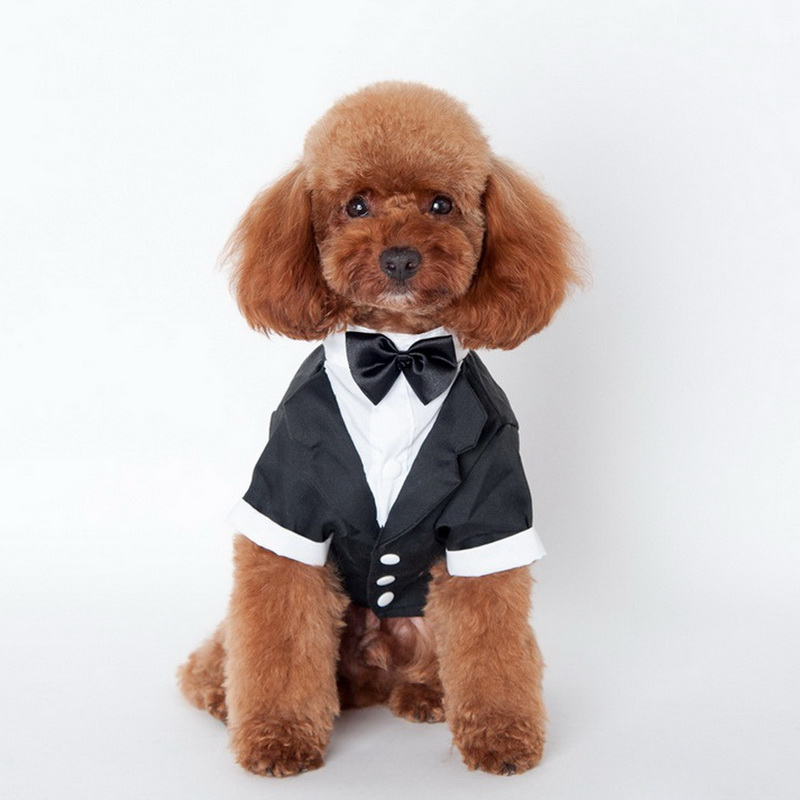 Fashion Cute Pet Dog Cat Clothes Prince Wedding Suit Tuxedo Bow Tie Puppy Coat S-XXL Sizes