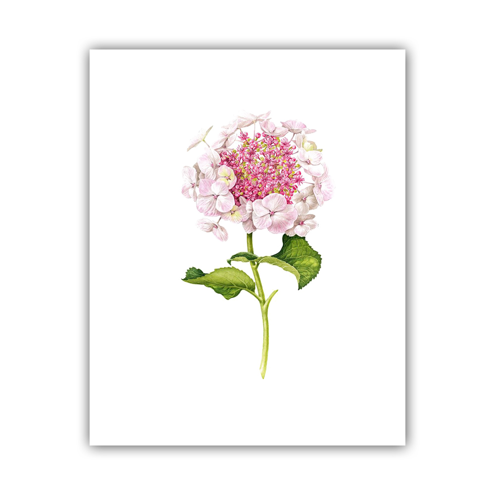 Beautiful Watercolor Flowers Pink Canvas Art Print Wall Pictures