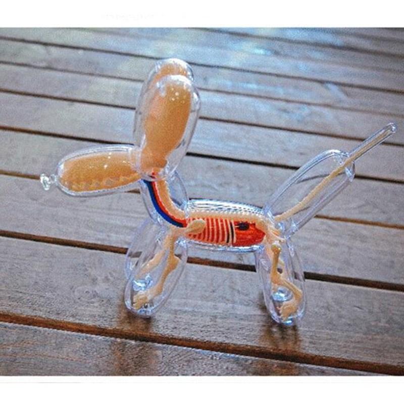 Balloons Dog Art DIY 4Dmasters Education Toys Crafts Home Decoration Living Room Desktop Skeleton Body Dog L3010
