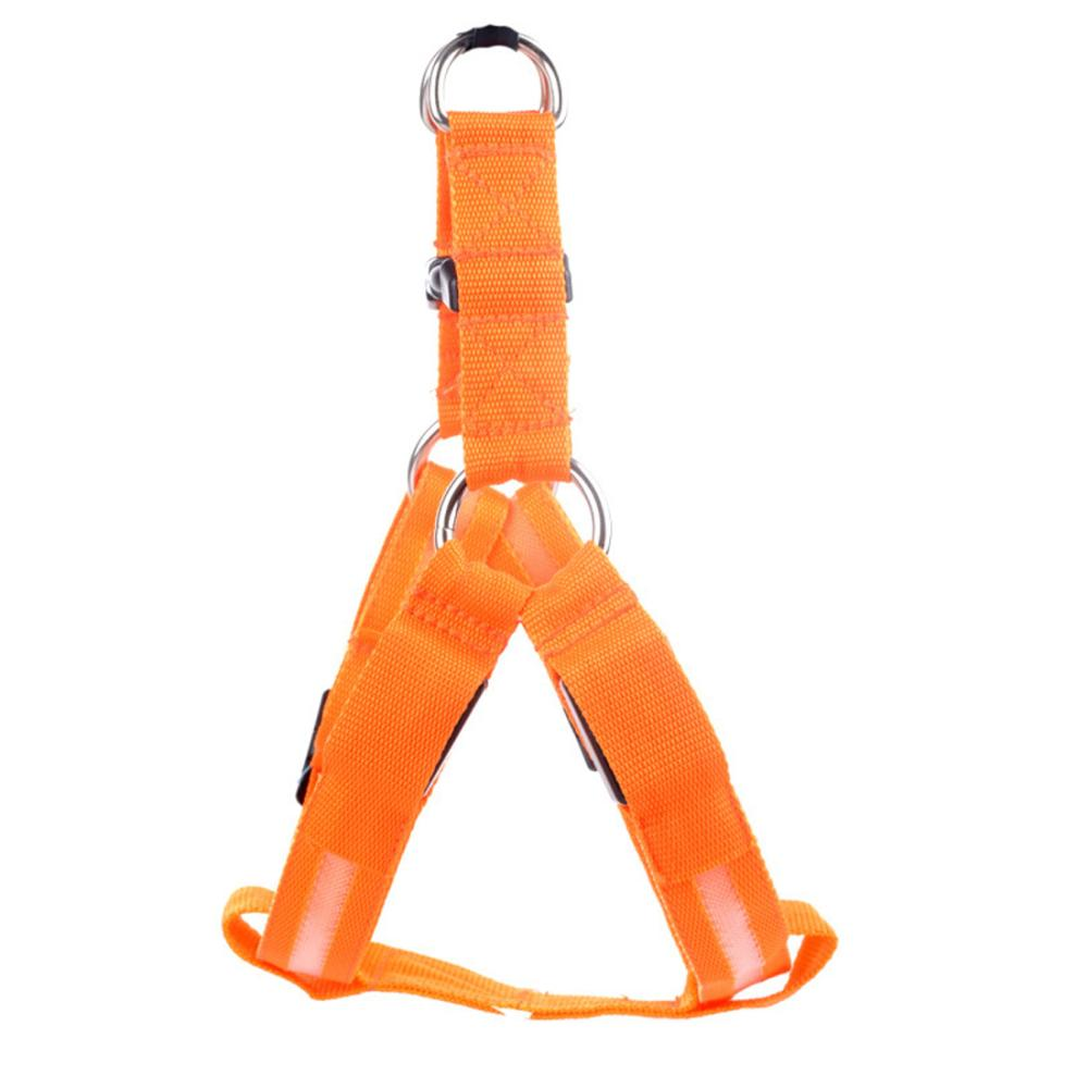 LED Safety Harness