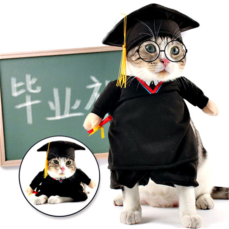 Pet Clothing Dog Cat Costumes Bachelor Cosplay Suit with Glasses Pets Apparel Halloween Clothes For Puppy Dogs Costume for cat