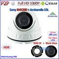 Hot H.265 1080P IP Mini Camera IMX290 2.0MP Ambarella Night Vision Camara IP Onvif 2.4 with 3MP HD Lens, HDR, H.264, P2P, IR-CUT