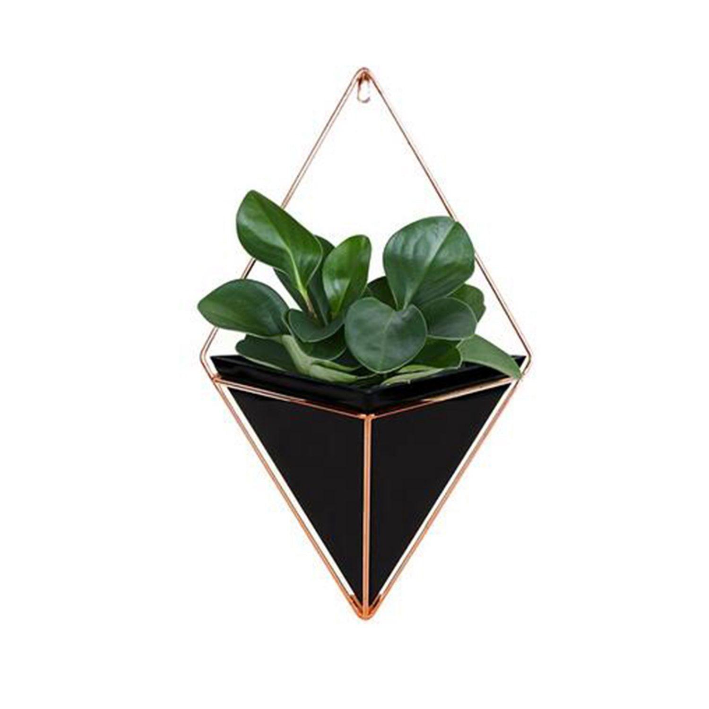 Glorieus Muur Opknoping Container Opbergrek Huishouden Innovatieve Indoor Woonkamer Ornament Decor Tuin Geometrische Vetplanten Planten