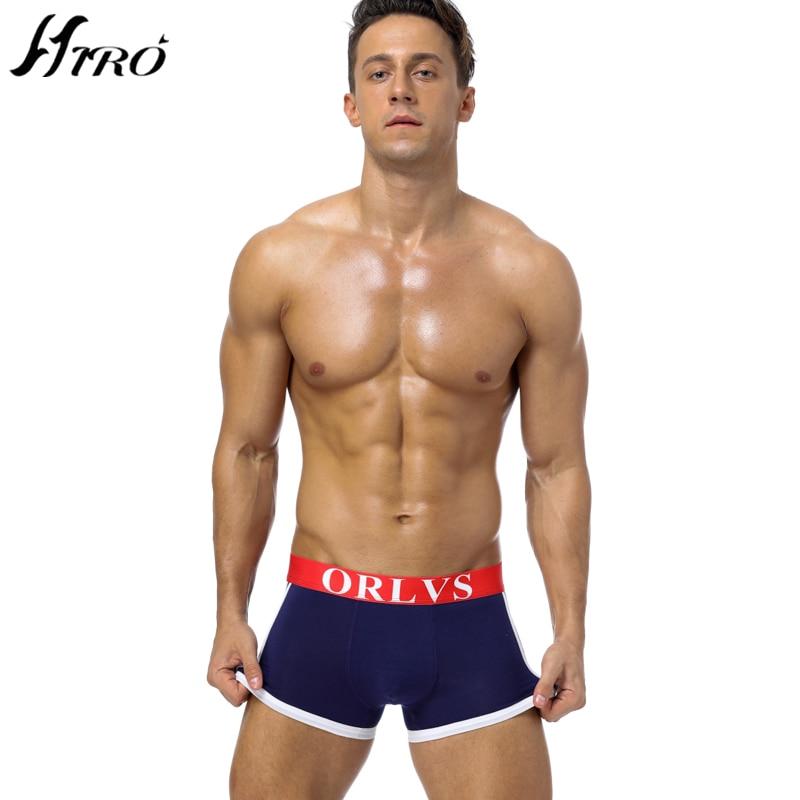 taylor gay porn star