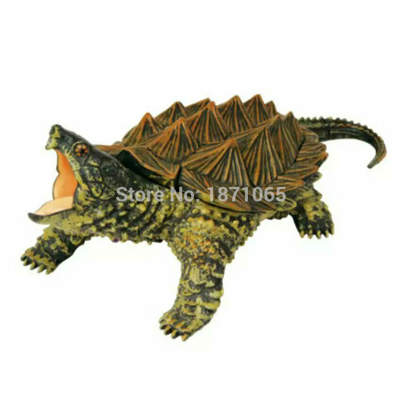 4D Master Anatomy Ermine Snapping Turtle Hippo Anatomy Toy Life Size ...