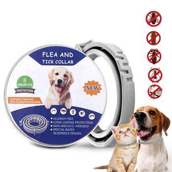 Protection TPE Pet Dog collar