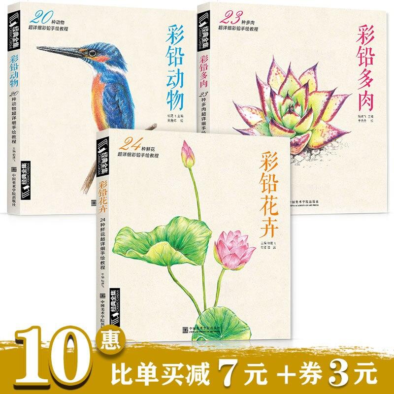 de Cor livros de entrada Chinês livros