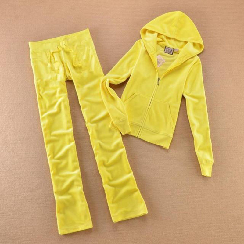 Spring Autumn Velvet Two Pieces Outfits Hooded Tops and Sweat Pants Set Tracksuit Women Sportwear XS-XL