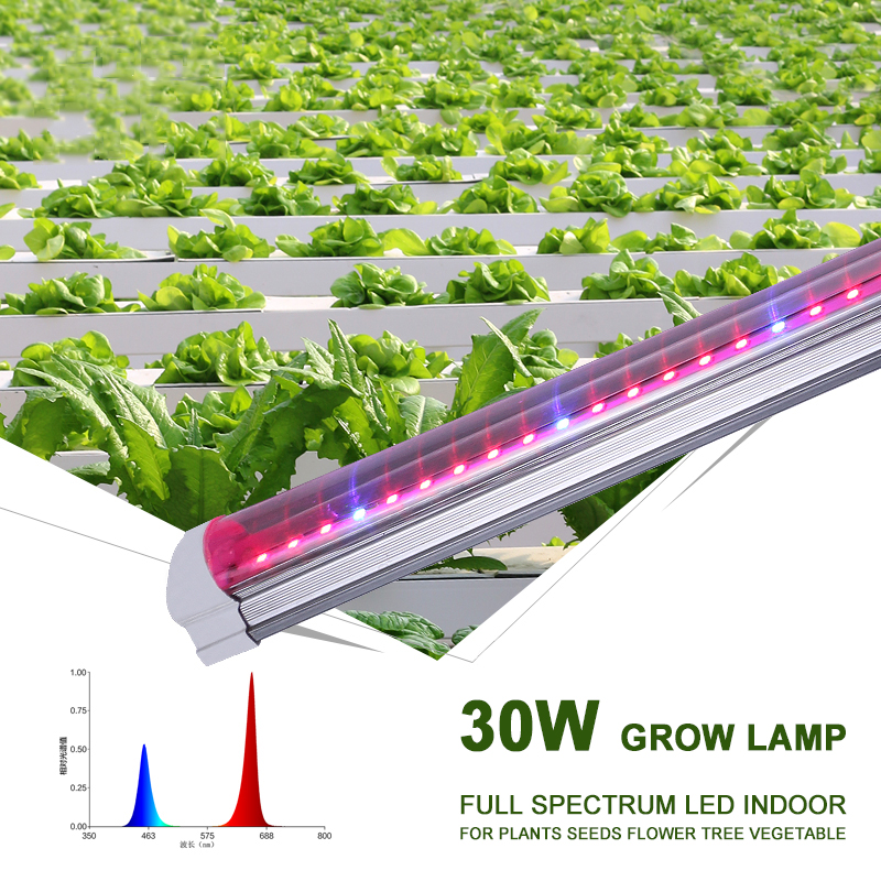 Led Plant Grow Lamp Indoor Fitolamp Full Spectrum For Plants Fitolampy Phyto Hydroponics Growing Lamp Seeds Flower Growth Light