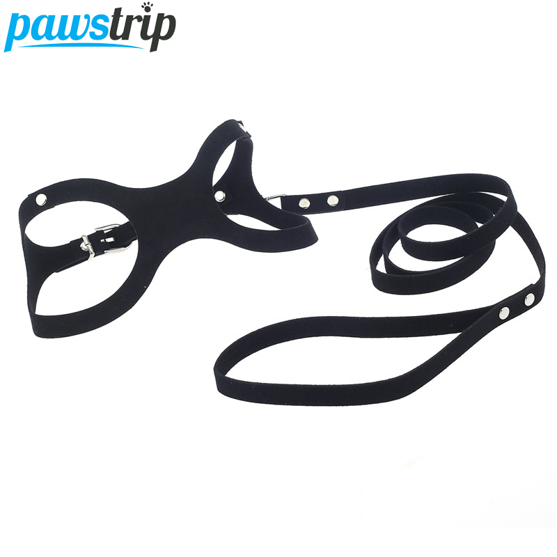 Aliexpress.com : Buy Unique Dog Harness Glasses Design
