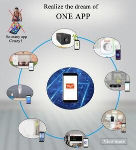 Image 2 - チュウヤミニ WIFI Onvif IP カメラバッテリービデオレコーダー HD 1080 ホームセキュリティ監視スマートライフアプリ Alexa google