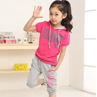 NEW Summer Girls Sets Cotton Baby Hoody And Pants Outfits Fashion Girl Clothing Set Baby Clothing