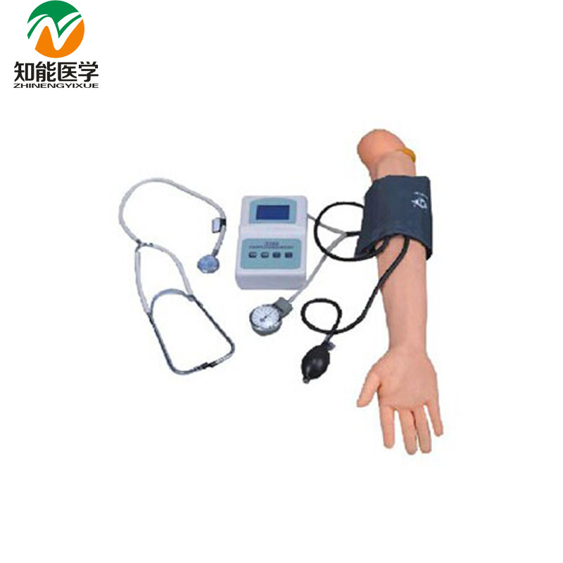 BIX-HS7 Advanced Arm Blood Pressure Measurement Training Model W131 bix h2400 advanced full function nursing training manikin with blood pressure measure w194