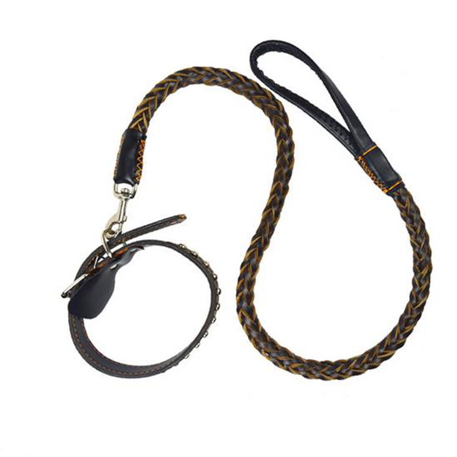Dog Training Leather Leads