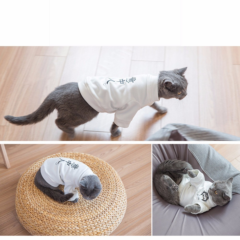 ebf0c13f3e9e Κατοικίδια Εραστές Ένα σκύλο γάτα Ρούχα νέο μοτίβο Φθινόπωρο και το ...