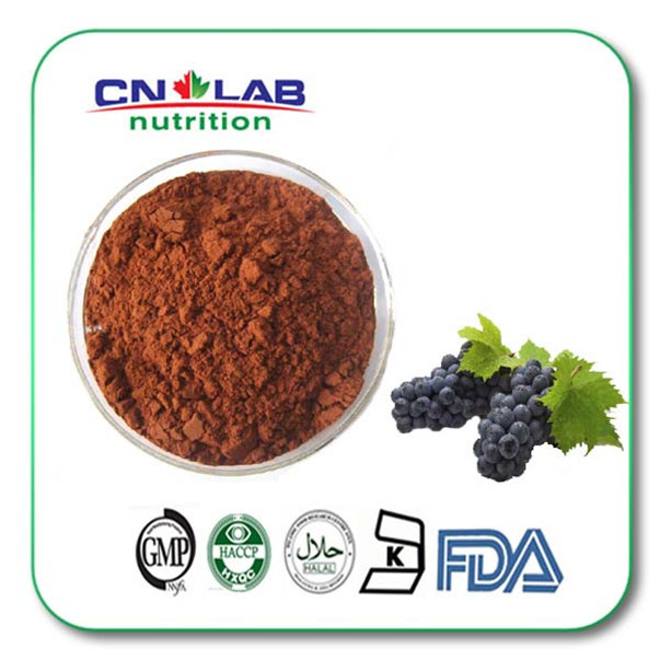 free shipping Grape Seed Powder/Grape Seed Procyanidin/Grape Seed Powder Extract 1 bag 100 g 100% pure fenugreek seed extract methi extract