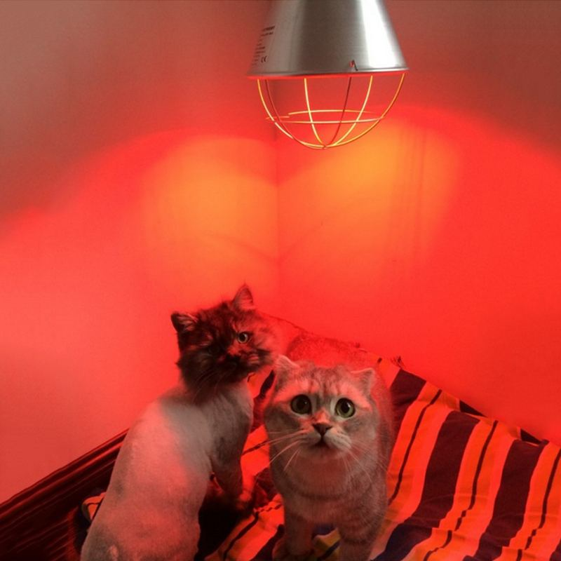E27 175W 275W Adjustable Pet Heating Lamp Shade Infrared Heat Light Shade Pet Brooder Chicken Piggy Dog Cat Heat Lampshade