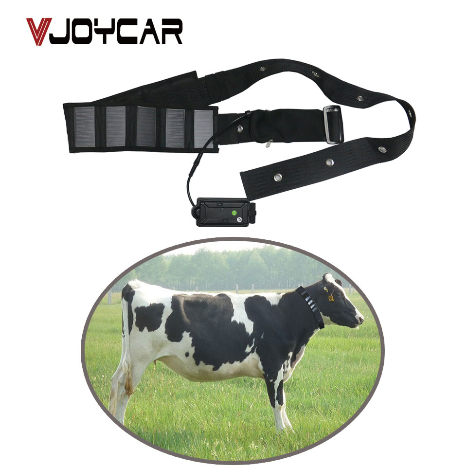 Cow GPS Tracker Solar Panel Collar Big Rechargeable Battery 5000mAh For Cattle Horse Camel Big Animal Real Time Tracking