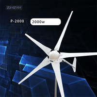 2000W Wind Power Generator; Wind Turbine with 5 Blades+Wind Controller P 2000, Impeller diameter 2900mm for Land and Marine Use