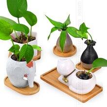 Pot de fleurs en céramique décoratif, visages de hibou, hexagone, plateau de fleurs en porcelaine, décoration de maison