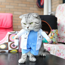 Funny Cat Clothes Costume Sex Nurse Suit Clothing For Cat Cool Halloween Costume Pet Clothes Suit For Cat XS-2XL 27S1