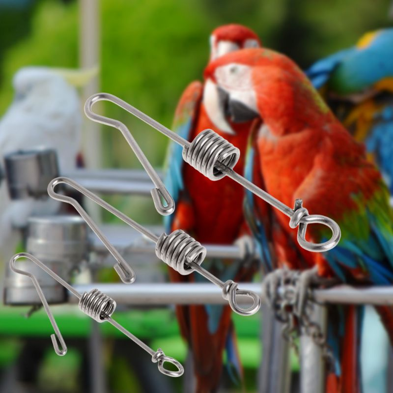 Pet Products Bird Foot Rings Hot Sell Parrot Bird Leg Buckle Stainless Steel Opening Ring Outdoor Activity Anklet Ring