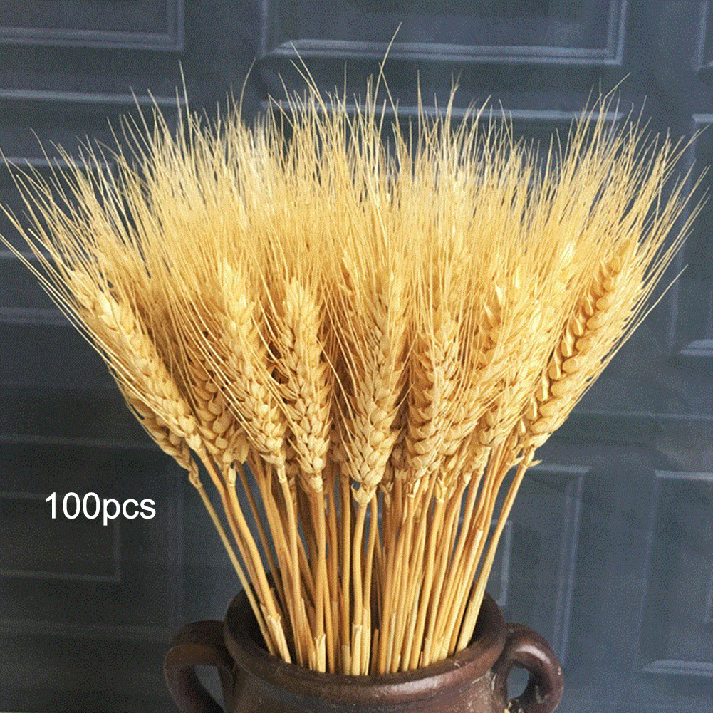 100pcs Artificial Plants Wheat Dried Flowers Bouquet Simulation Silk Cloth Plant Photography Props Home Garden Store Decoration