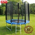 GSD High quality 6 Feet Trampoline with SafetyNet Fits and ladder jump safe net TUV-GS CE EN71 were approved