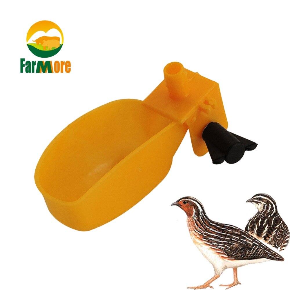 10Pcs Quail Automatic Drinking Piegon Duck Water Bowl Small font b Pet b font Bee Parrot