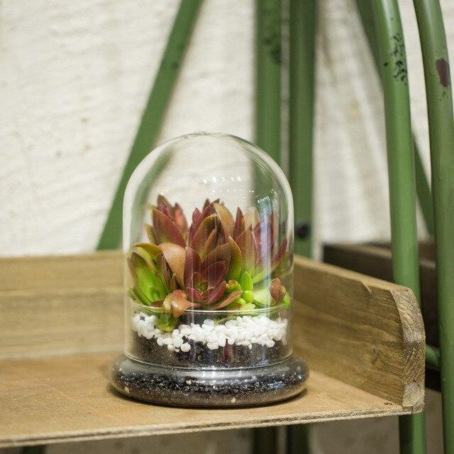 17 43 5 De Reduction Classique Verre Cloche Oiseau Dome Couverture Affichage Choche Terrarium Conteneur Table Miniature Affichage Cloche Plateau