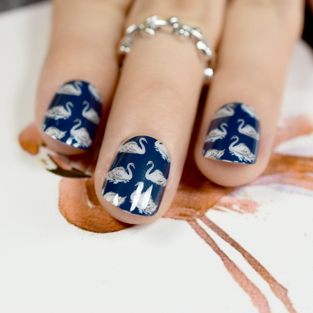 White Swan Pattern Fake Nails Blue Image Lady Short Nail Tips Daily Wear Decoration Nails Art Tip 24pcs/kit