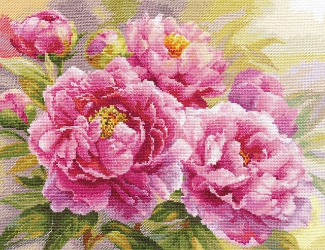 Gold Collection Counted Cross Stitch Kit Pink Peonies Peony Flower Flowers alisa 50x40cm, 14CT