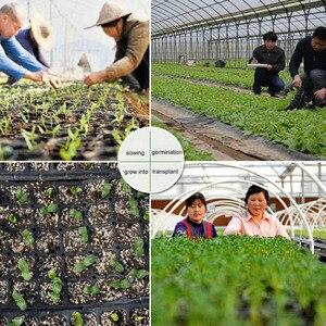 Image 3 - 10 個 32/72/105/128 細胞播種プラスチック保育園トレイ Maceteros 盆栽植木鉢緑多肉植物ポット種子ボックス