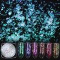 1 Caja Transparente de Uñas Camaleón Lentejuelas Paillette Manicura Nail Art Decoration 9 Colores