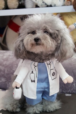 Funny-Pet-Costume-Suit-Dog-Clothes-Puppy-Uniform-Outfit-Cat-Clothing-Nurse-Doctor-Policeman-Pirate-Cowboy (1)
