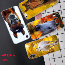 Silicone Phone Case Cute horse Fashion Printing for iPhone XS XR Max X 8 7 6 6S Plus 5 5S SE Phone Case Matte Cover стоимость