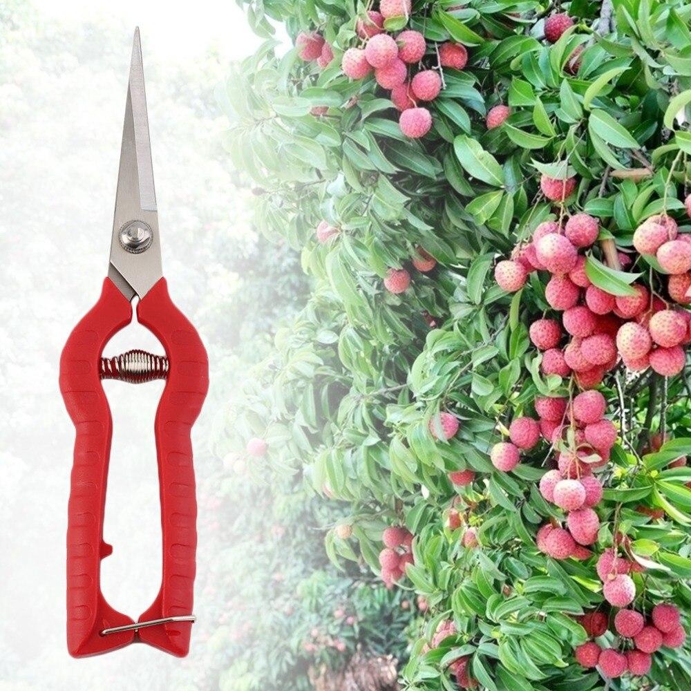 Garden Bonsai Tools Chopper Scissors Hand Tool Graft Pruner Shears Cutter For Paramedic Gardening  Pruning Grass Flower Secator