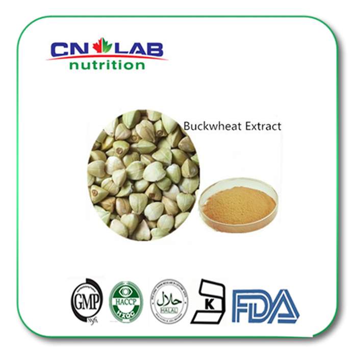 100% natural High quality Buckwheat extract,Low Price Buckwheat powder,buckwheat seed extract powder
