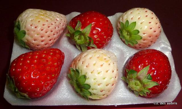 White Snow Strawberry Seeds 100pcs/pack