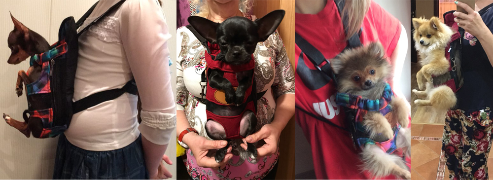 Cute Small Dog Backpack Carrier 7