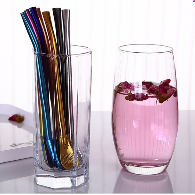 Stainless Steel Drinking Straw with Filter