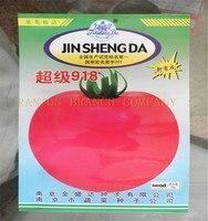 1 original package 10G Hybrid F1 918 tomato seeds, Big red fruit potted seed, good taste vegetable seeds