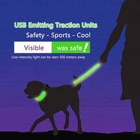 Nylon Personalized Pet Dog Collar Waterproof Luminous LED Night Light Collar And Leash Set USB Charging