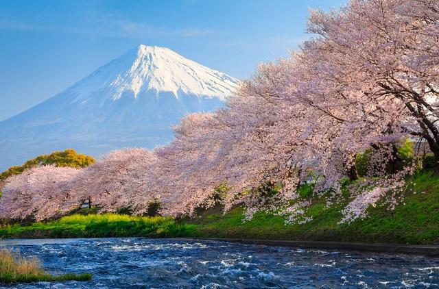 Grosir Lukisan Top Art Lukisan Jepang Gunung Fuji Indah