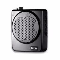Portable N 725 Bee Loudspeaker Teachers Dedicated Lecture Waist Hanging Headset Teaching Guide Speaker Voice Amplifier