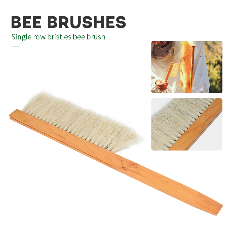 Beekeeping Tools Wood Bee Sweep Brush Single Row Bristles Bee Brush New Bee Brushes Beekeeping Equipment For Apiculture